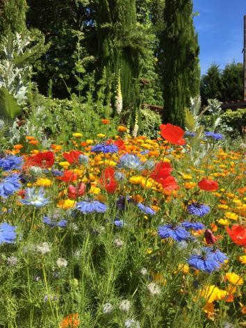 6-Jardins-de-Clogs6.jpg