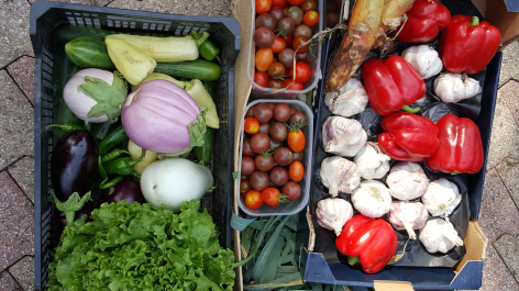 5-legumes-picdepan-arrensmarsous-HautesPyrenees.jpg