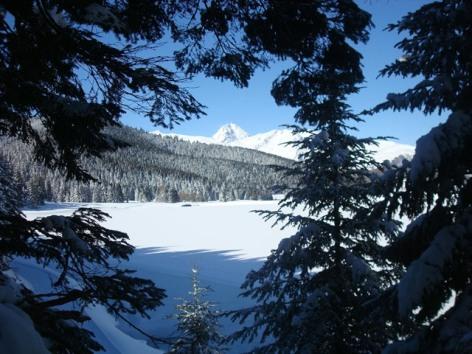 3-HPCH12---Cabanes-payolle-vue-en-hiver.JPG