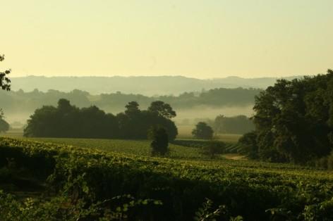 3-Madiran-paysage-vignes-HPTE-MAISON-DES-VINS-MADIRAN--6-.jpg