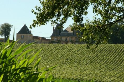 0-Paysage-vignes-et-chateau-Aydie-Madiran-BD.jpg
