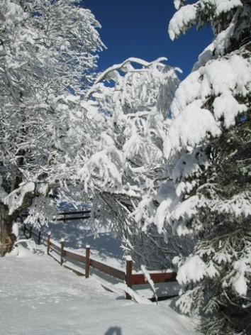17-HPVILVAC1---CEVEO---exterieur-hiver-2.jpg